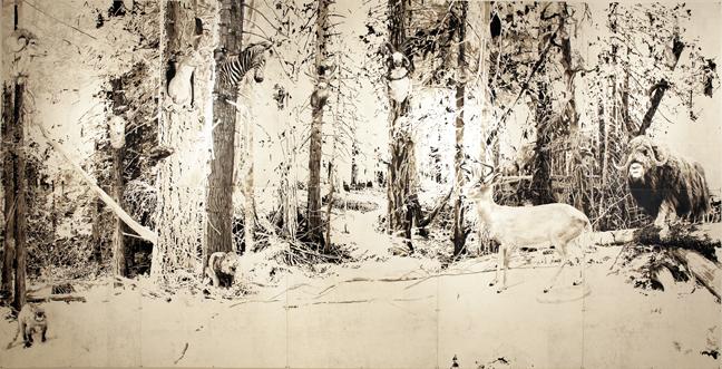Preservation Woods